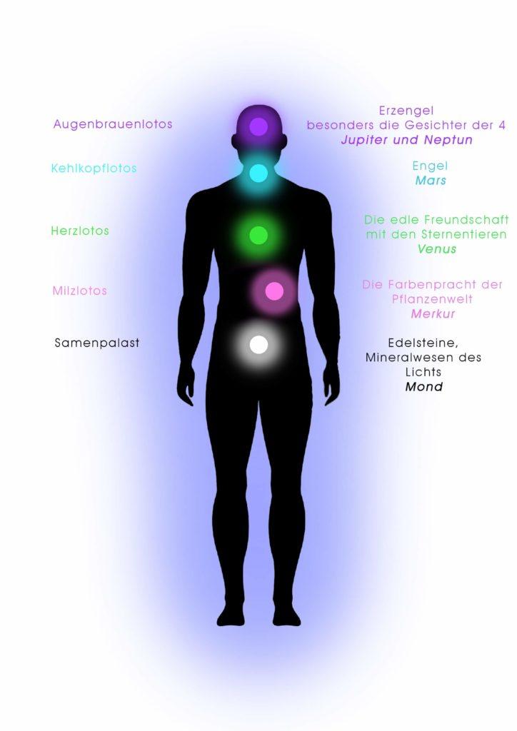 Spirituelle Phönix Konzepte 2
